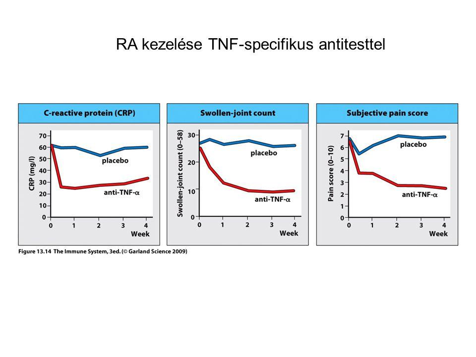RA kezelése TNF-specifikus antitesttel