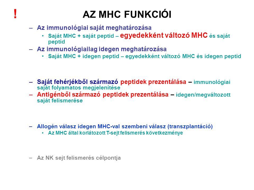 ! AZ MHC FUNKCIÓI Az immunológiai saját meghatározása