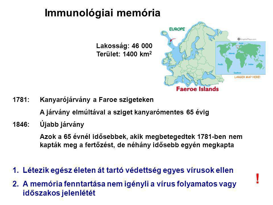Immunológiai memória Lakosság: 46 000. Terület: 1400 km2. 1781: Kanyarójárvány a Faroe szigeteken.