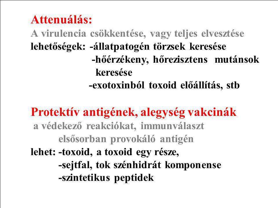 Protektív antigének, alegység vakcinák