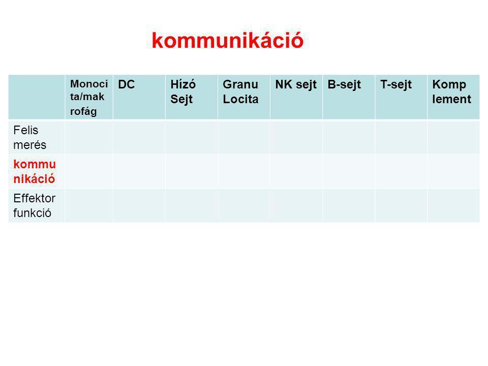 kommunikáció DC Hízó Sejt Granu Locita NK sejt B-sejt T-sejt Komp