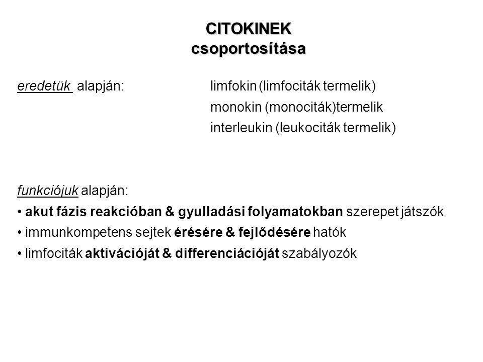 CITOKINEK csoportosítása