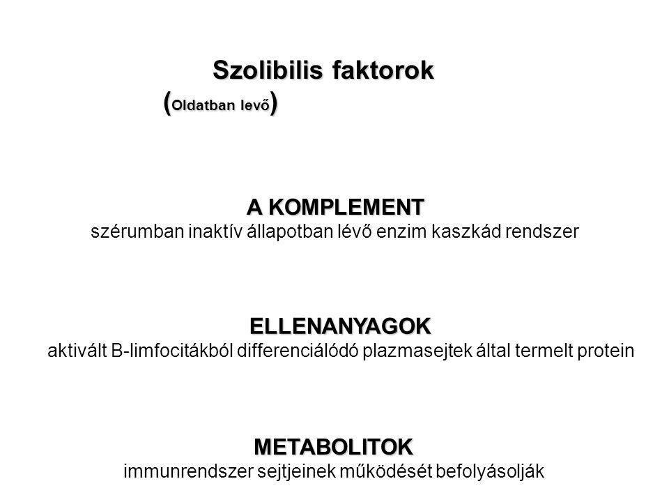 Szolibilis faktorok (Oldatban levő) A KOMPLEMENT ELLENANYAGOK