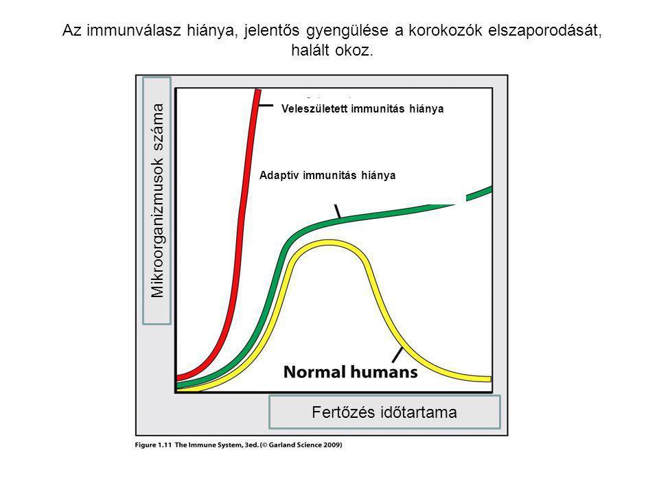 Mikroorganizmusok száma