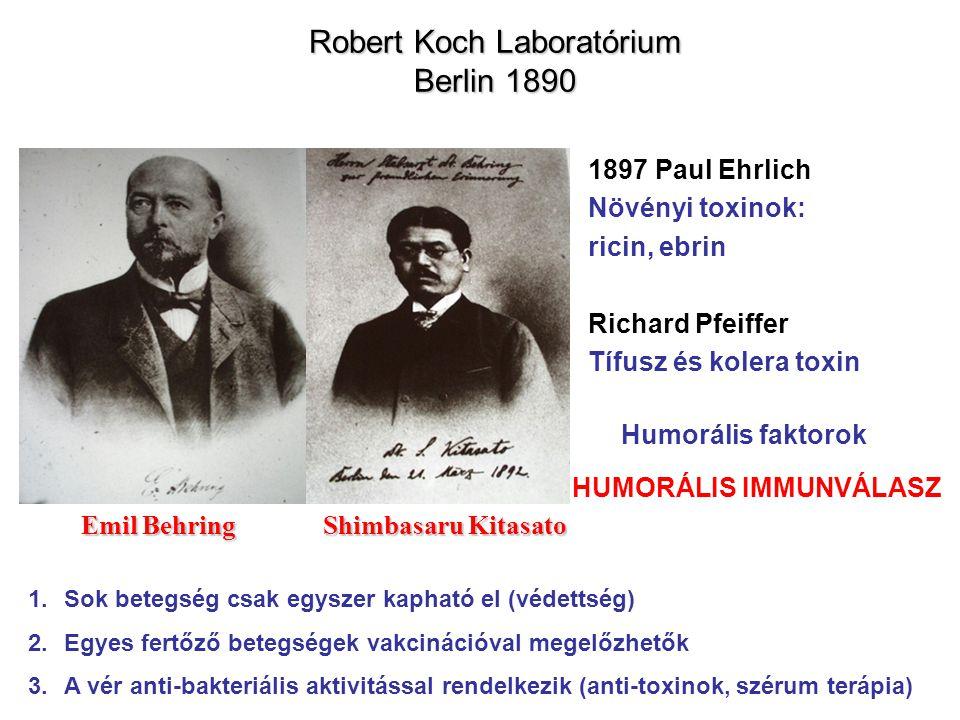 Robert Koch Laboratórium Berlin 1890