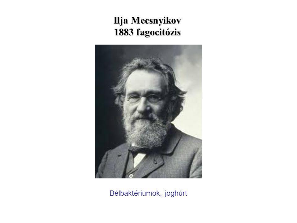 Ilja Mecsnyikov 1883 fagocitózis