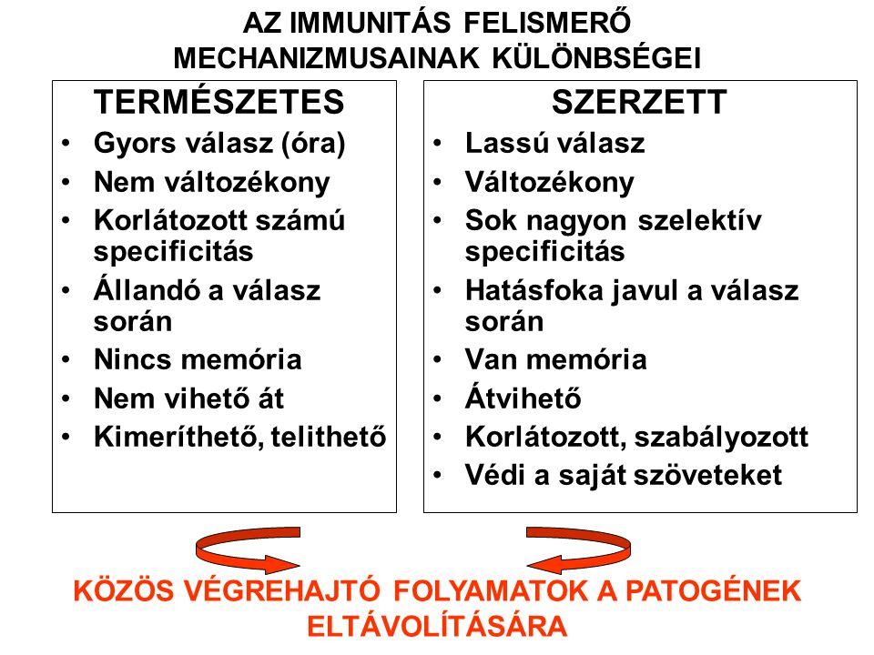 TERMÉSZETES SZERZETT AZ IMMUNITÁS FELISMERŐ