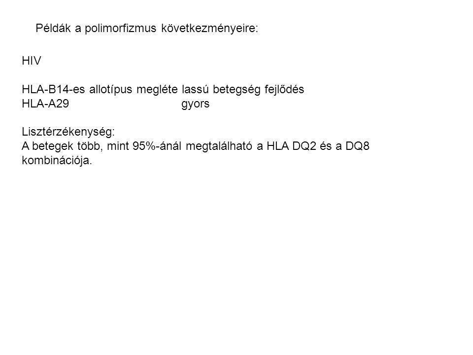 Példák a polimorfizmus következményeire: