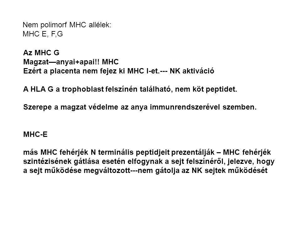 Nem polimorf MHC allélek:
