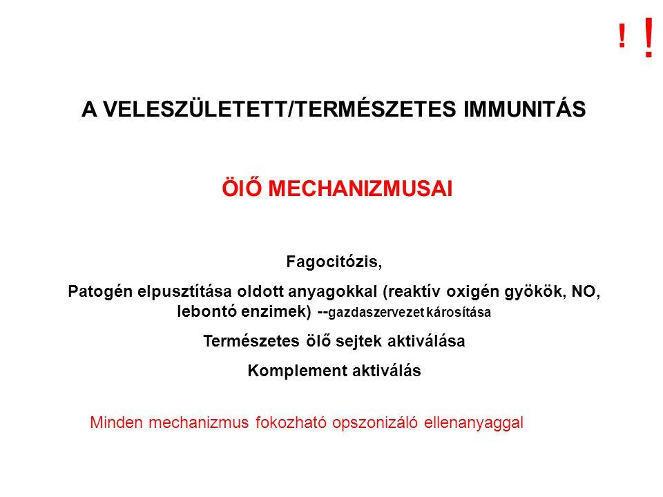! ! A VELESZÜLETETT/TERMÉSZETES IMMUNITÁS ÖlŐ MECHANIZMUSAI
