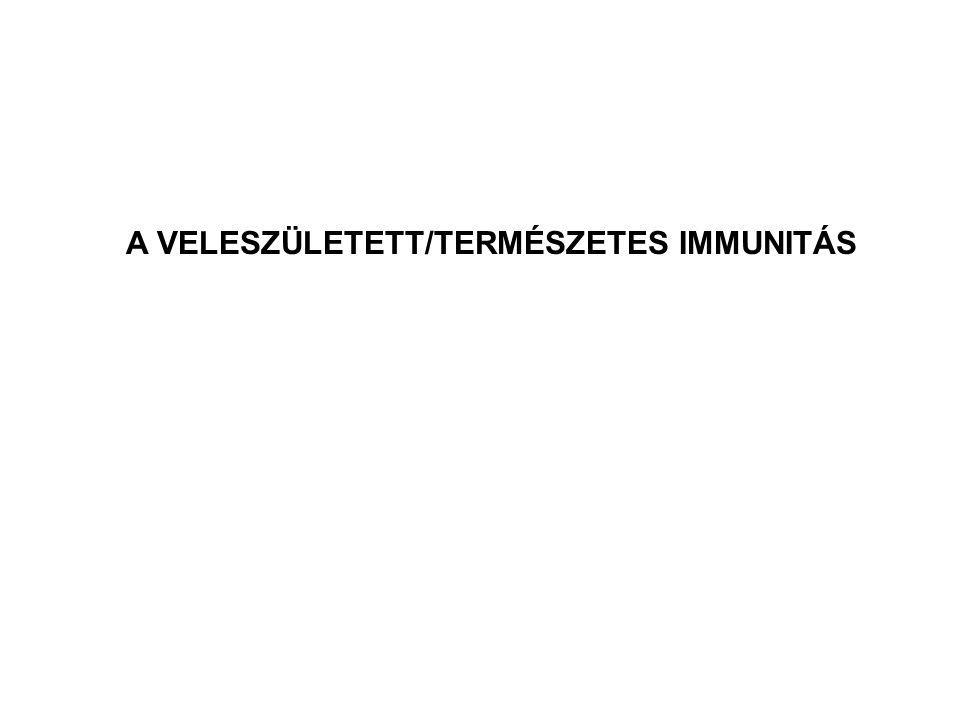 A VELESZÜLETETT/TERMÉSZETES IMMUNITÁS