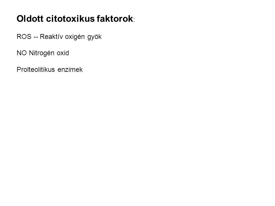 Oldott citotoxikus faktorok: