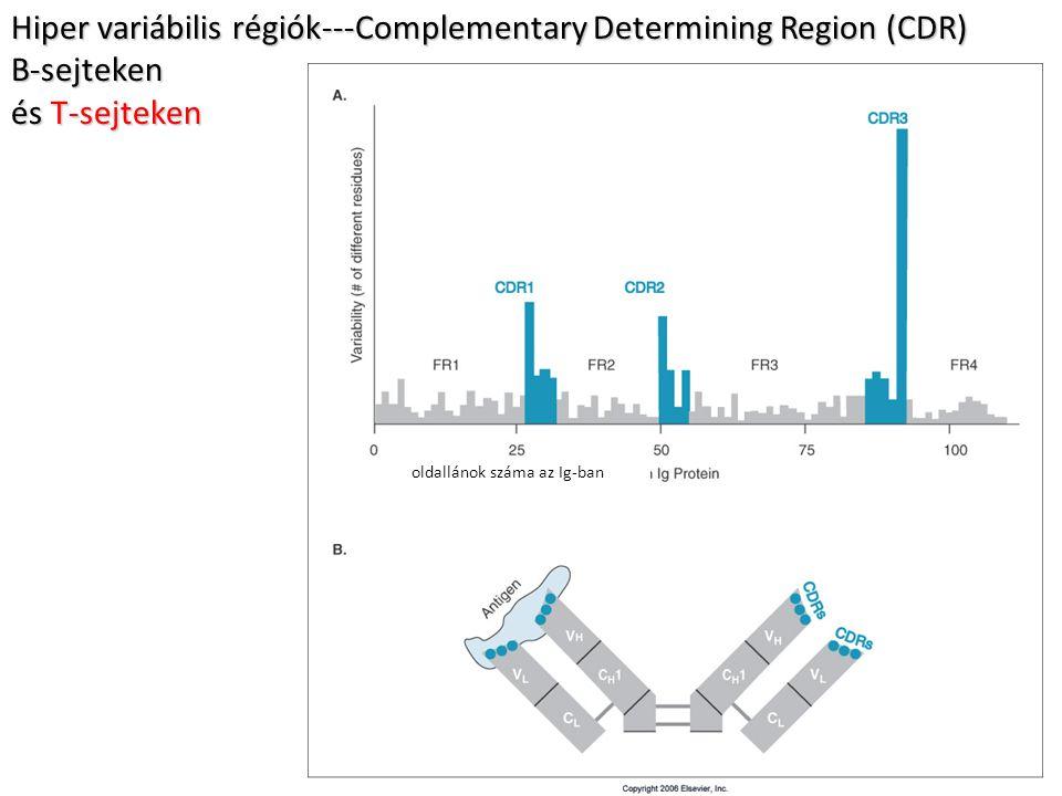 Hiper variábilis régiók---Complementary Determining Region (CDR)