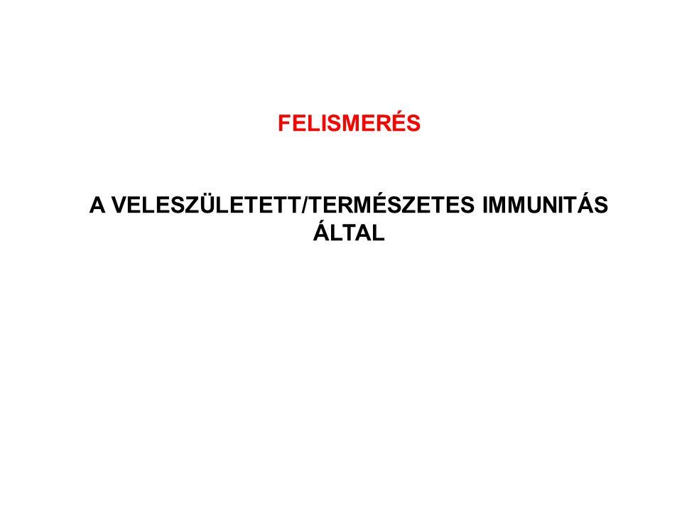 A VELESZÜLETETT/TERMÉSZETES IMMUNITÁS ÁLTAL