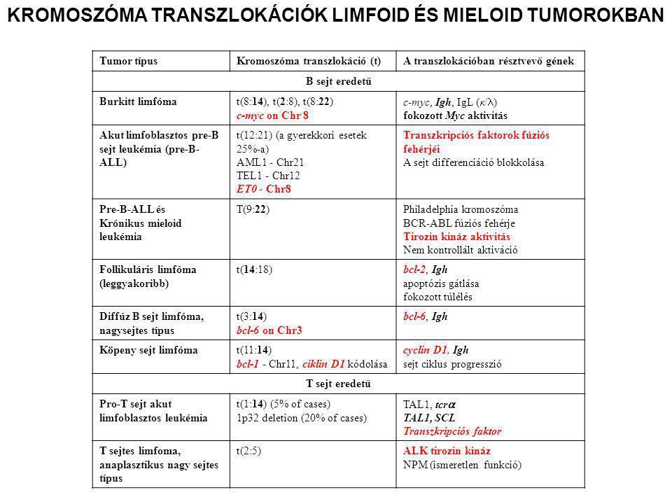 KROMOSZÓMA TRANSZLOKÁCIÓK LIMFOID ÉS MIELOID TUMOROKBAN