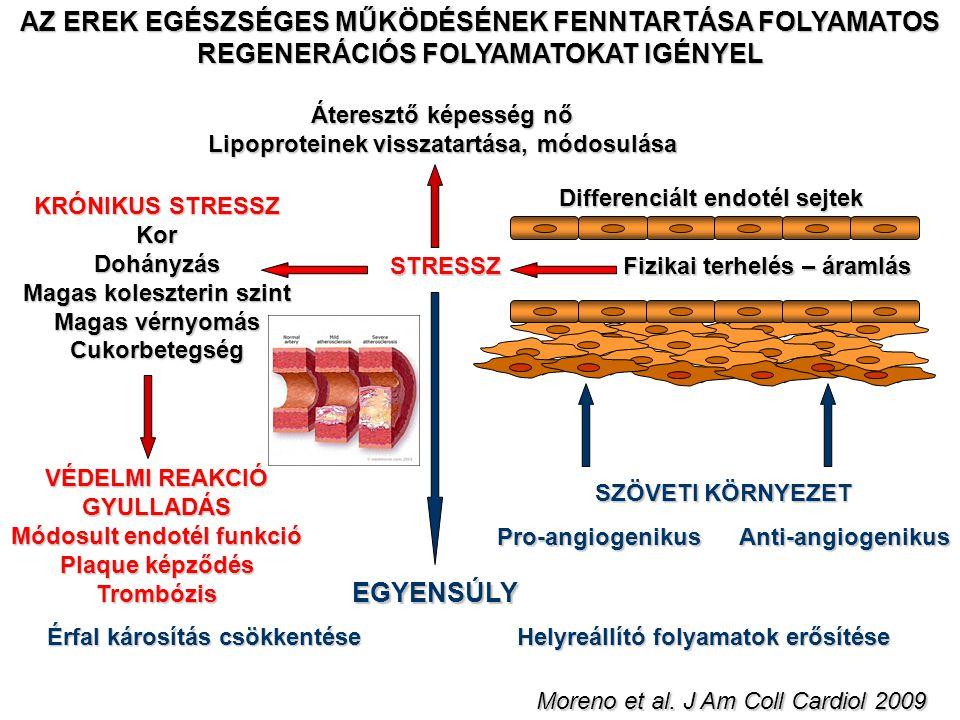 Lipoproteinek visszatartása, módosulása