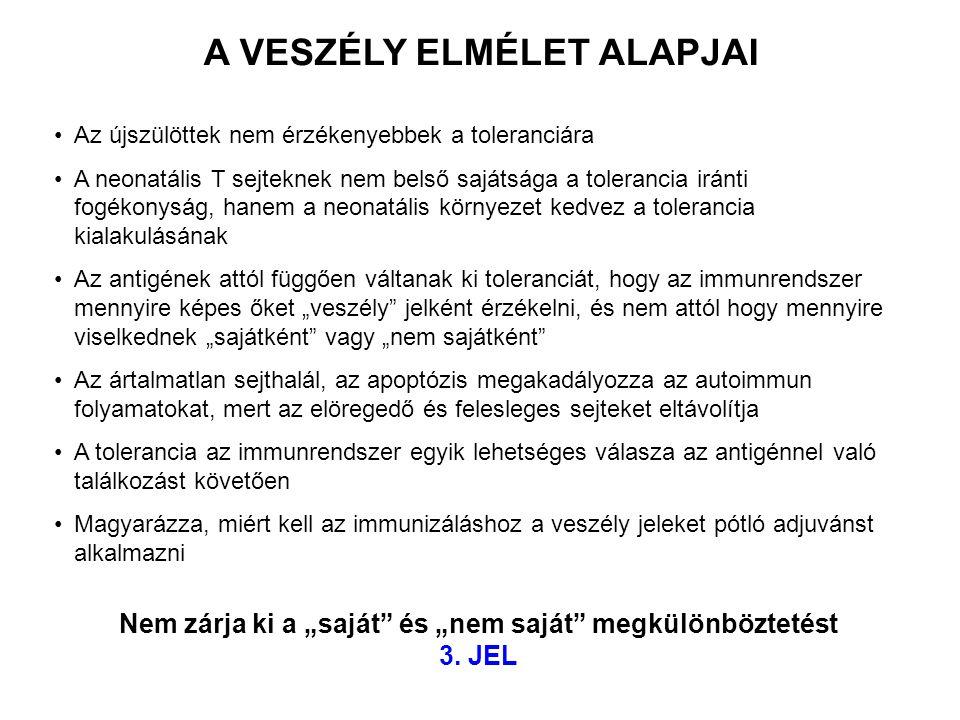 A VESZÉLY ELMÉLET ALAPJAI