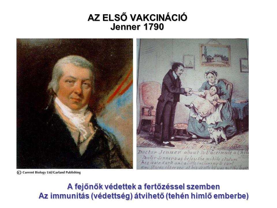AZ ELSŐ VAKCINÁCIÓ Jenner 1790
