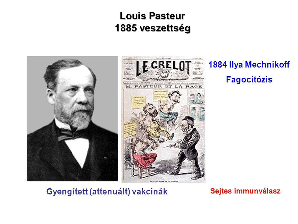 Louis Pasteur 1885 veszettség