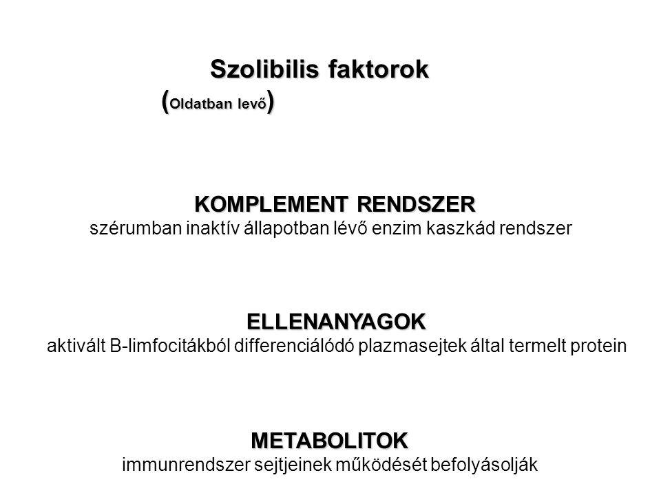 Szolibilis faktorok (Oldatban levő) KOMPLEMENT RENDSZER ELLENANYAGOK