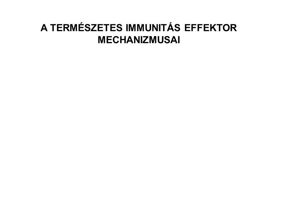A TERMÉSZETES IMMUNITÁS EFFEKTOR MECHANIZMUSAI