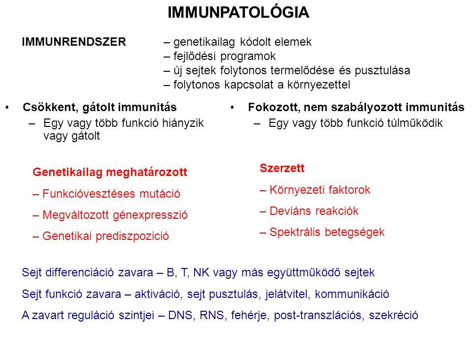IMMUNPATOLÓGIA IMMUNRENDSZER – genetikailag kódolt elemek