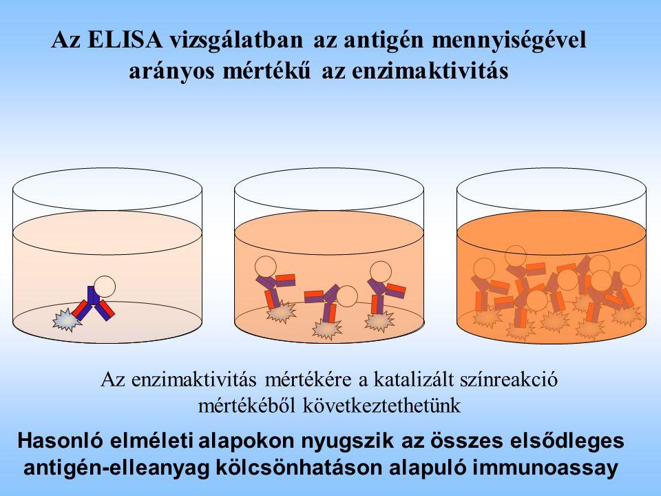 Az ELISA vizsgálatban az antigén mennyiségével arányos mértékű az enzimaktivitás