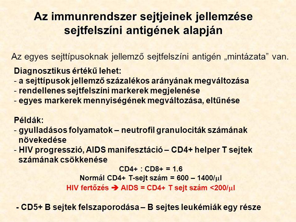 Az immunrendszer sejtjeinek jellemzése sejtfelszíni antigének alapján