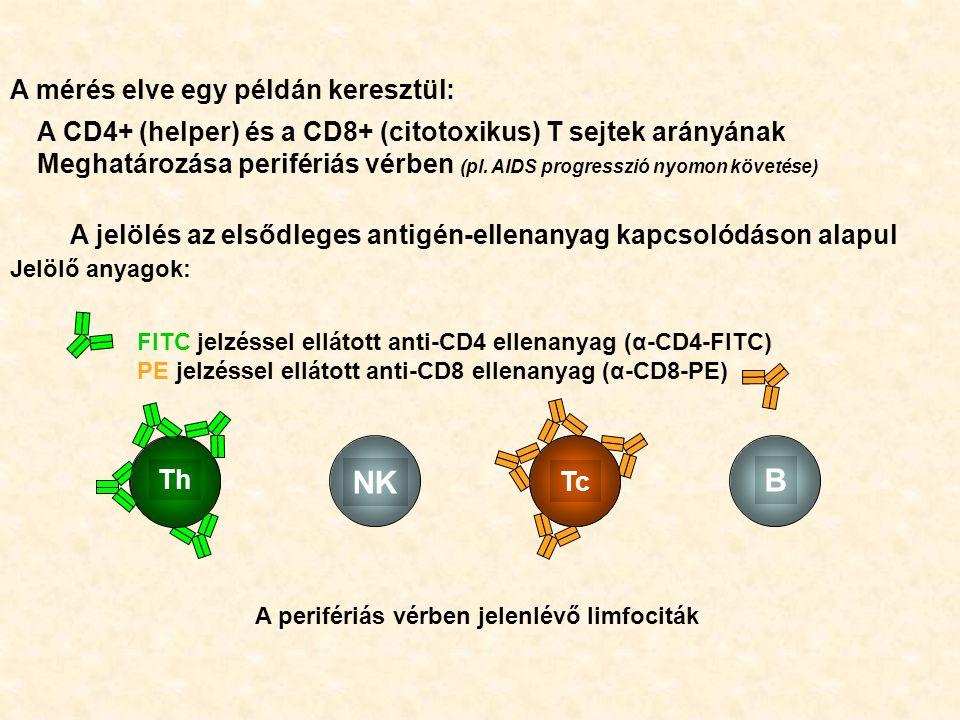 NK B A mérés elve egy példán keresztül: