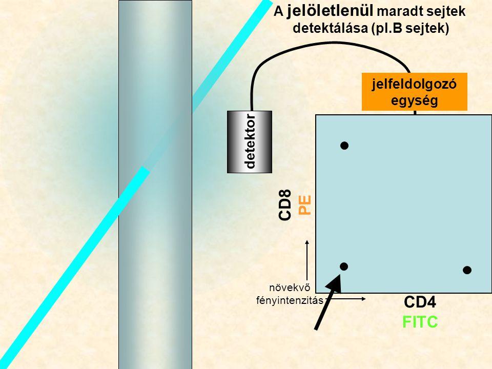A jelöletlenül maradt sejtek detektálása (pl.B sejtek)