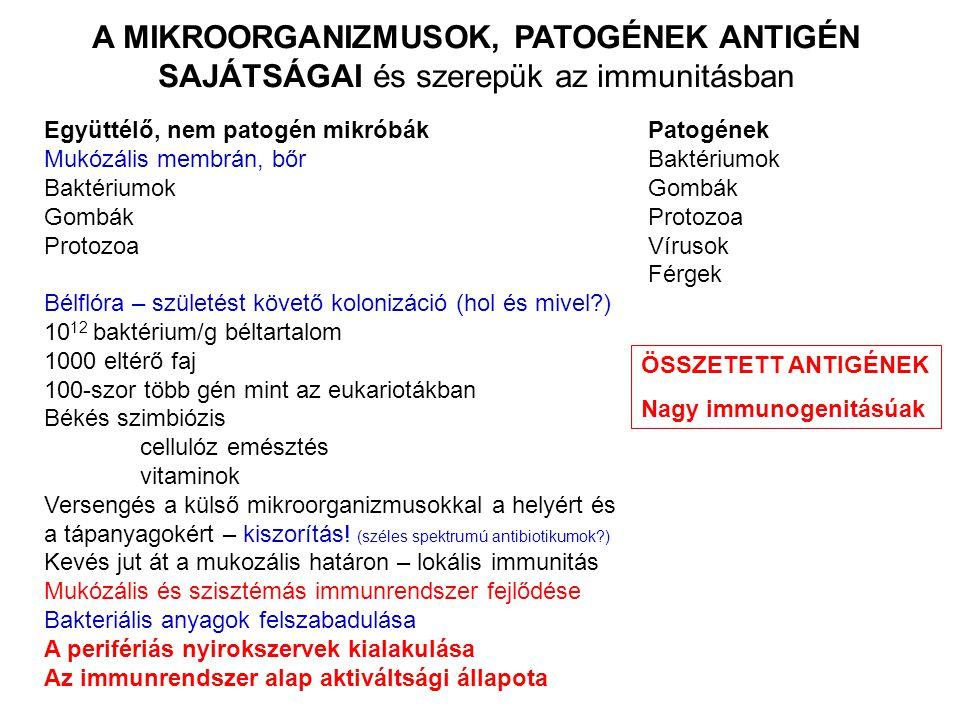 A MIKROORGANIZMUSOK, PATOGÉNEK ANTIGÉN SAJÁTSÁGAI és szerepük az immunitásban