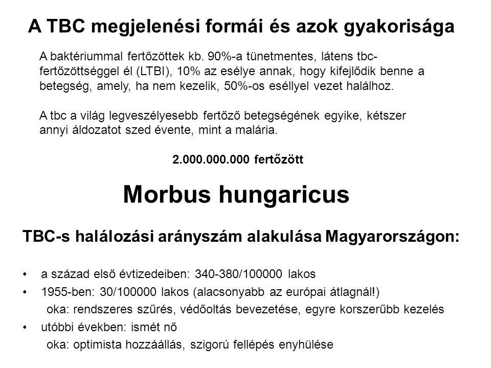 Morbus hungaricus A TBC megjelenési formái és azok gyakorisága
