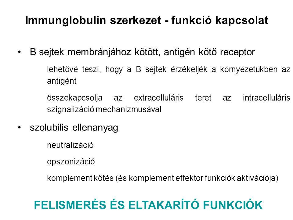 FELISMERÉS ÉS ELTAKARÍTÓ FUNKCIÓK