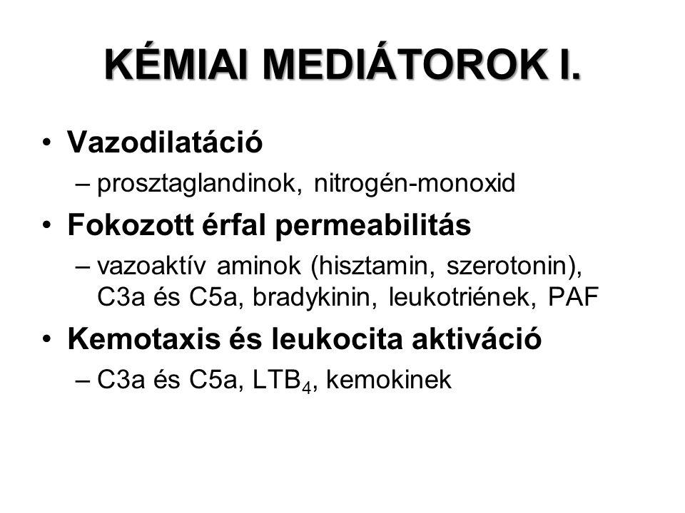 KÉMIAI MEDIÁTOROK I. Vazodilatáció Fokozott érfal permeabilitás