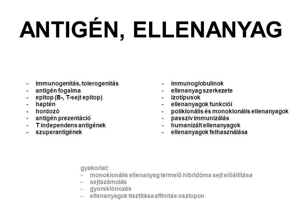 ANTIGÉN, ELLENANYAG immunogenitás, tolerogenitás antigén fogalma