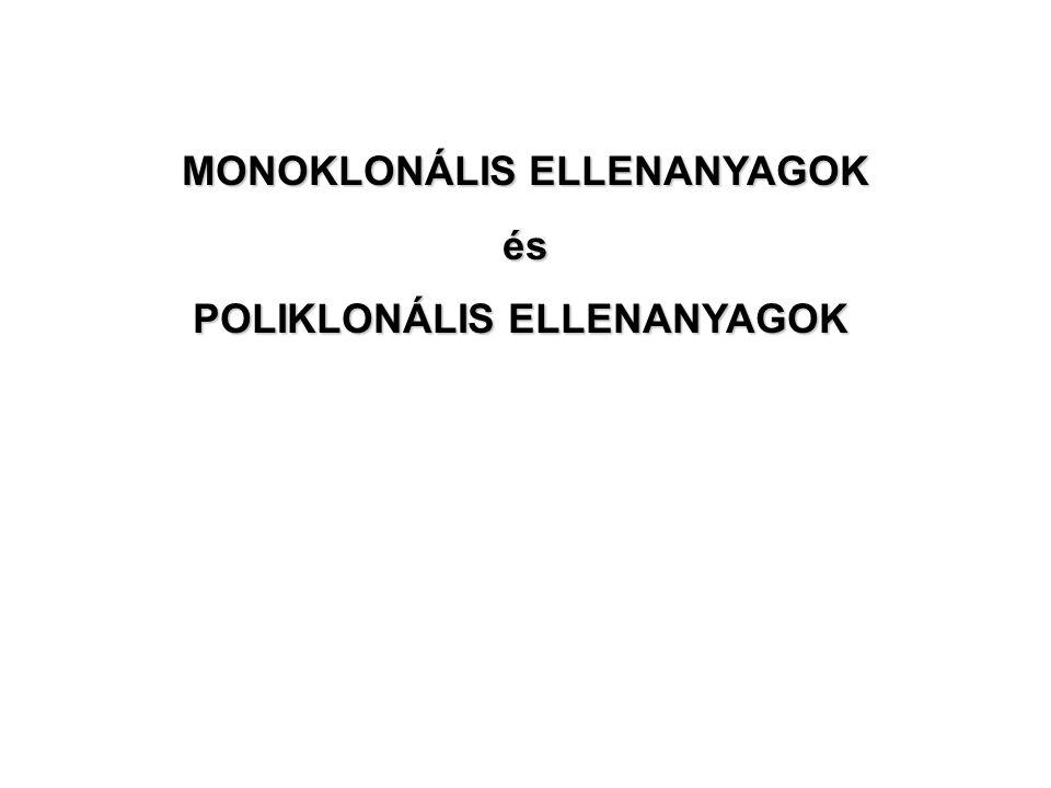 MONOKLONÁLIS ELLENANYAGOK POLIKLONÁLIS ELLENANYAGOK