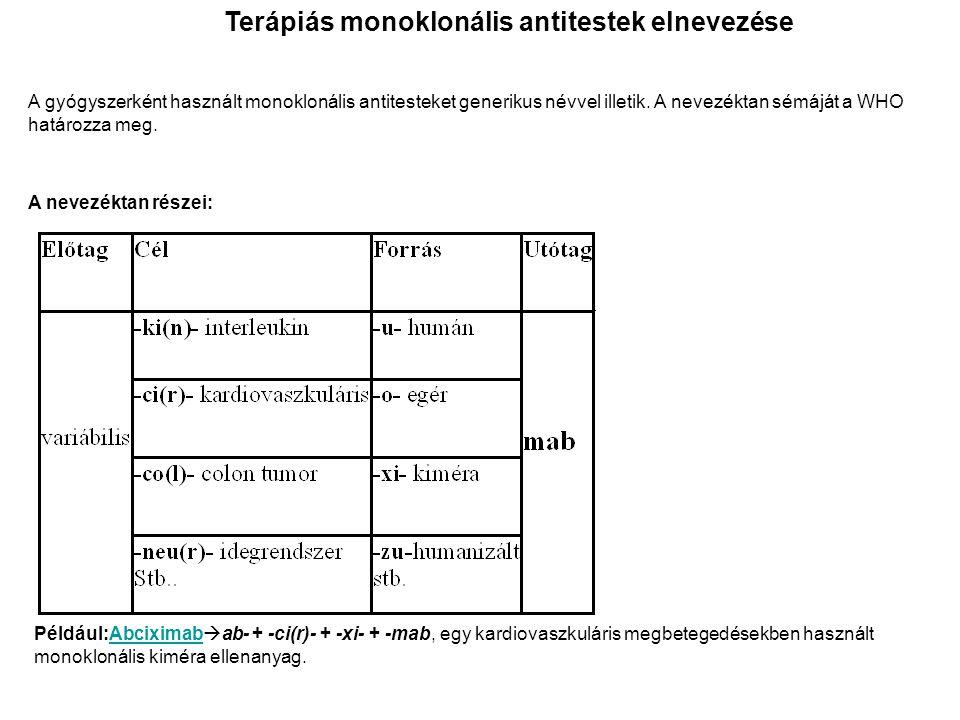 Terápiás monoklonális antitestek elnevezése