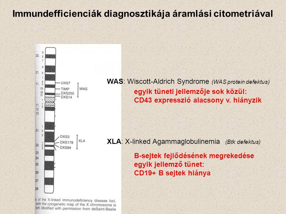 Immundefficienciák diagnosztikája áramlási citometriával