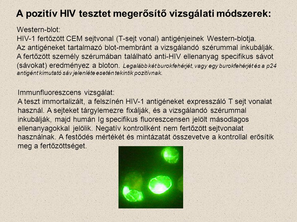 A pozitív HIV tesztet megerősítő vizsgálati módszerek: