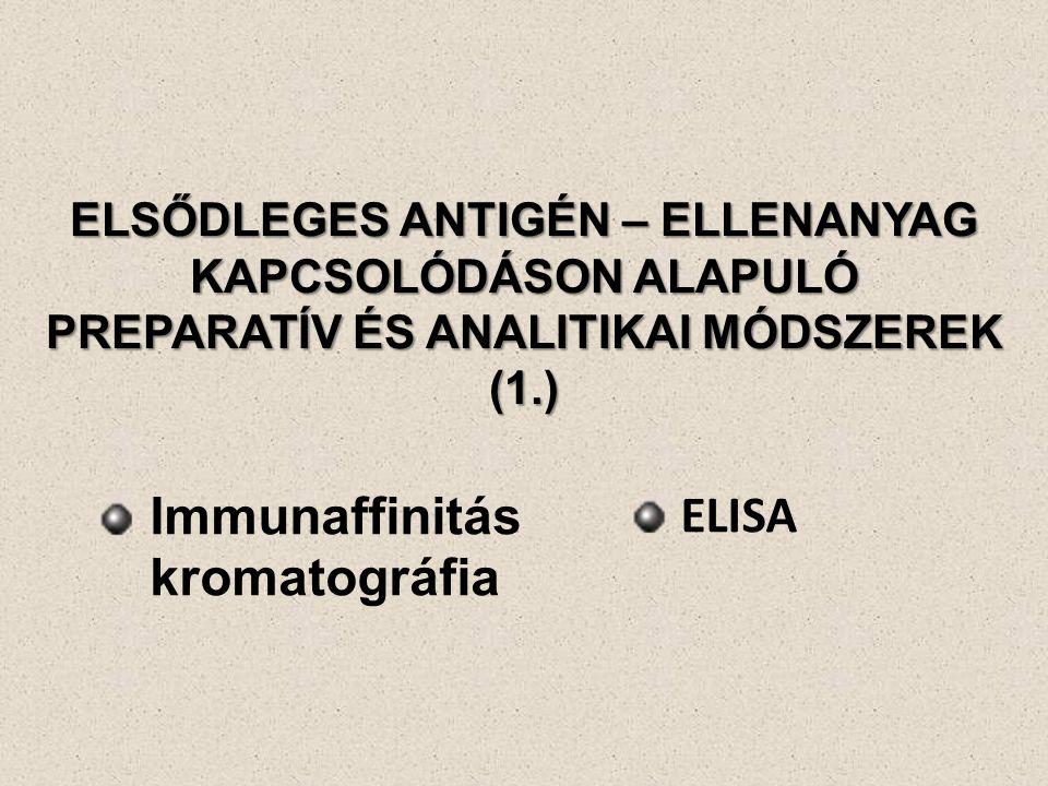 Immunaffinitás kromatográfia ELISA