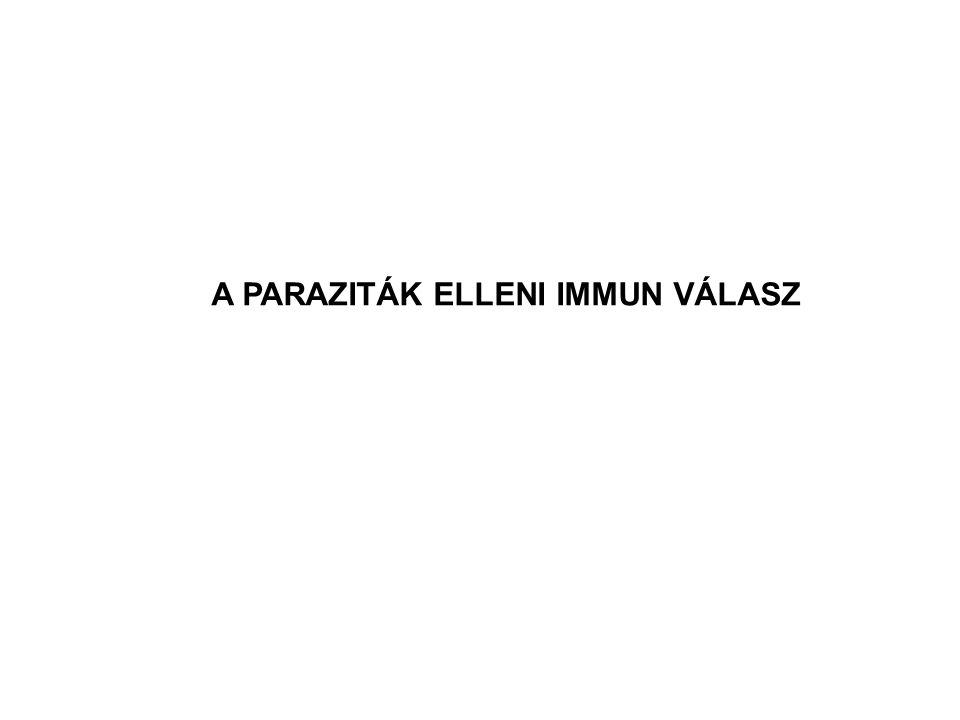 A PARAZITÁK ELLENI IMMUN VÁLASZ