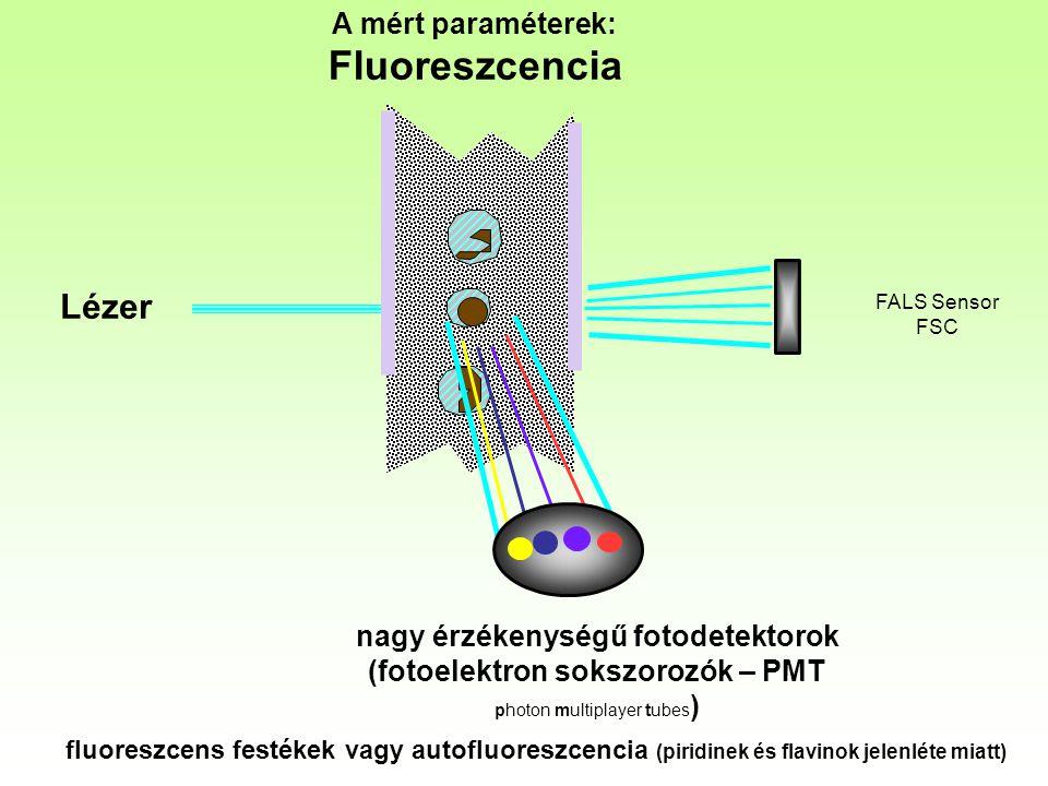 nagy érzékenységű fotodetektorok (fotoelektron sokszorozók – PMT
