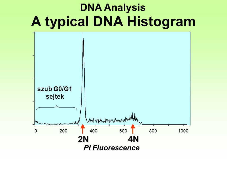 A typical DNA Histogram