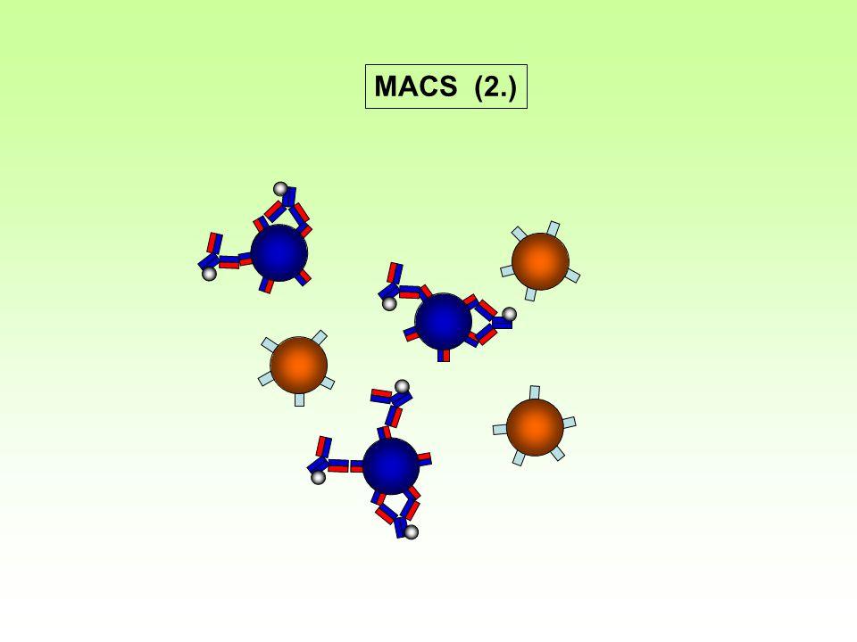 MACS (2.)
