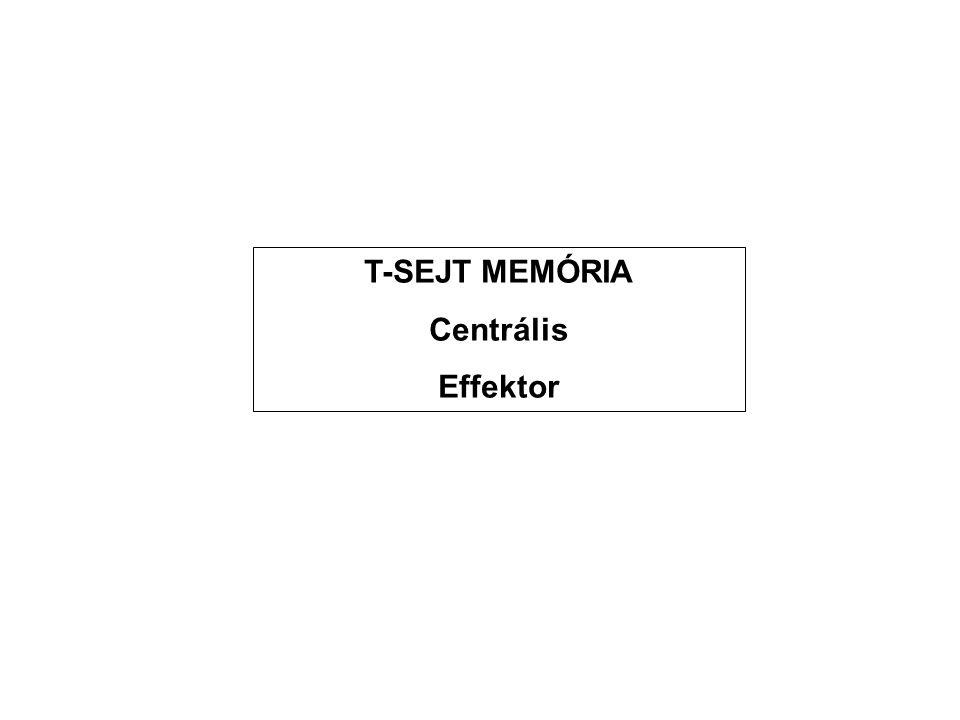 T-SEJT MEMÓRIA Centrális Effektor