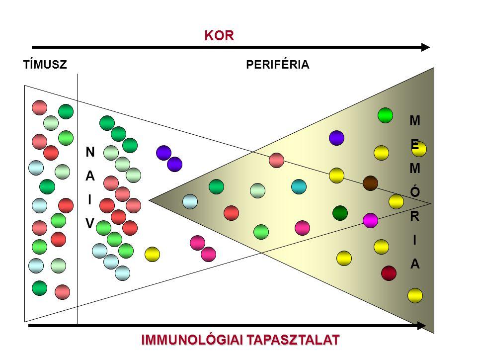 IMMUNOLÓGIAI TAPASZTALAT