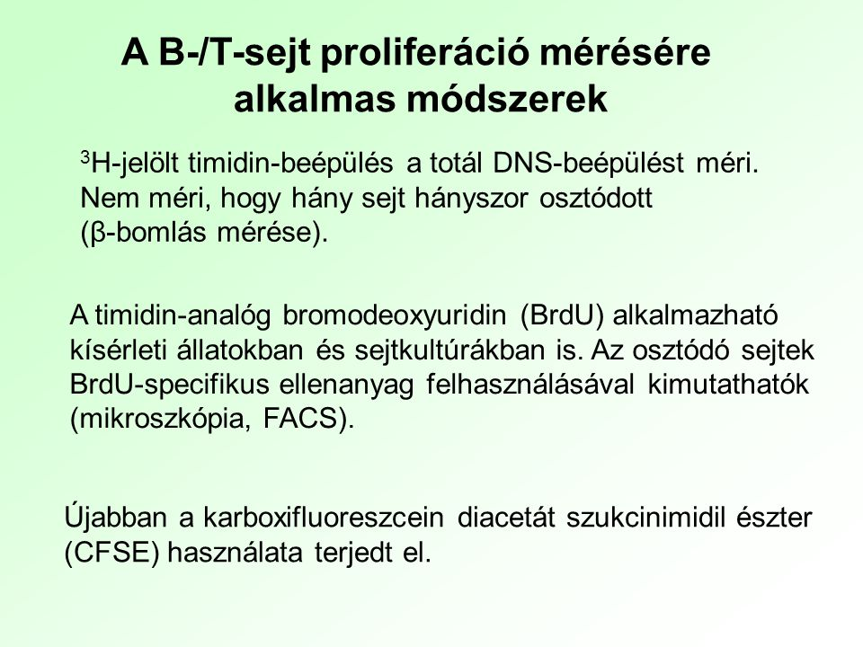 A B-/T-sejt proliferáció mérésére