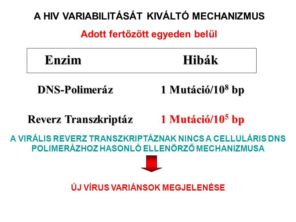 Hibák Enzim 1 Mutáció/105 bp Reverz Transzkriptáz DNS-Polimeráz