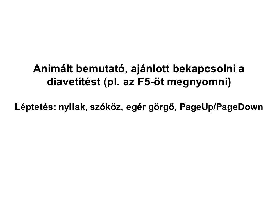 Léptetés: nyilak, szóköz, egér görgő, PageUp/PageDown
