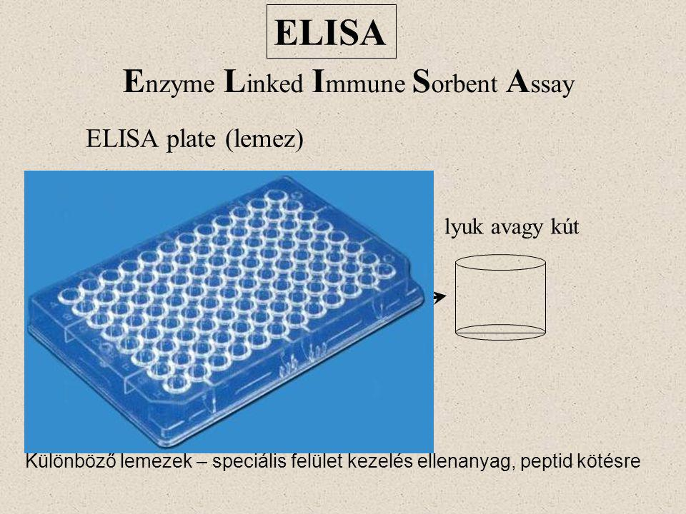 ELISA Enzyme Linked Immune Sorbent Assay ELISA plate (lemez)